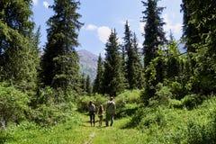 Dorosły mężczyzna z dwa dziećmi, dziad chodzi w halnym lesie z wnuczkami wycieczkuje, odpoczynek, zielony tło zdjęcie royalty free