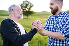 Dorosły modnisia syn z starszym ojcem na spacerze w naturze przy zmierzchem Fotografia Royalty Free