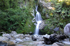 Dorothy Falls. Near Lake Kaniere, Westland, New Zealand Royalty Free Stock Photography