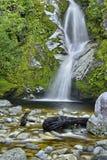 Dorothy Falls Royalty Free Stock Image