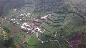 Dorp met Theeaanplanting op Alishan-Bergengebied, Taiwan Lucht Mening stock video