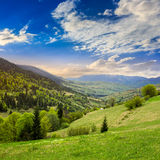 Dorp op hellingsweide met bos in berg Stock Afbeelding