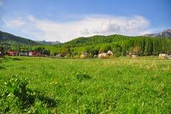 Dorp in platteland Stock Afbeelding