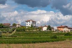 Dorp van Ceglo, ook Zegla in beroemd Sloveens wijnbouwgebied van Goriska Brda, met aangestoken wijngaarden en boomgaarden, Stock Foto