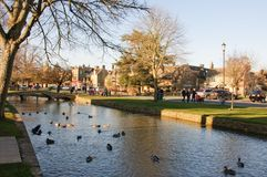 Dorpsbeek in Bourton op het Water, Cotswolds, Gloucestershir Stock Fotografie