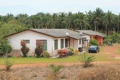 Dorpshuis naast palmengebied Royalty-vrije Stock Afbeelding