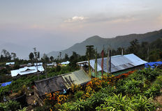 Dorpshuizen met bloemen en installaties, Silerygaon-Dorp, Sikkim Royalty-vrije Stock Fotografie