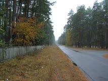 Dorpsstraat in de herfst stock afbeelding