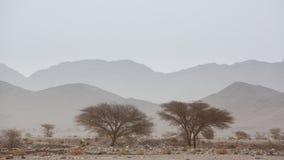 Dorre en hete dag in de woestijn van de Sahara, Tata royalty-vrije stock afbeelding