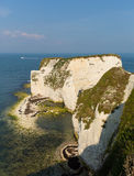 Dorset coast chalk cliffs Studland near Swanage south England UK Stock Photography