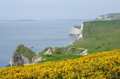 Dorset Coast route to Durdle Door. Dorset Coast on route to Durdle Door stock photos