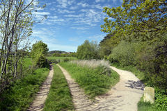 Dorset coastal path in fields Royalty Free Stock Image