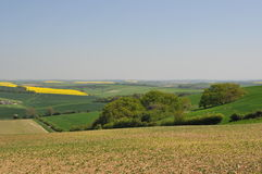 Dorset countryside Stock Image