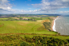 Dorset countryside and coastline Royalty Free Stock Photo