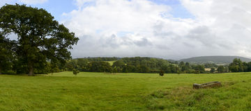 Dorset countryside near Yeovil. Landscape with  grass fields of hilly Dorset countryside Royalty Free Stock Photography