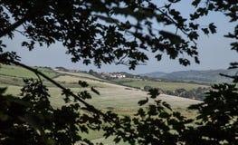 Dorset - en sikt till och med sidorna Royaltyfria Foton