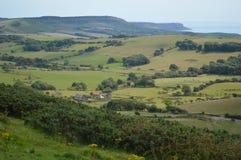Dorset fält och kust- sikter Royaltyfria Bilder