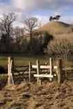 Dorset krajobraz Zdjęcia Stock