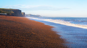 Dorset kust UK Royaltyfria Foton