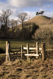 Dorset Landscape Stock Photos