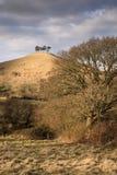 Dorset landskap arkivfoto