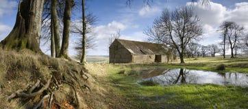 Dorset landskap royaltyfria bilder