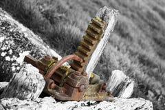 Dorset plats Royaltyfri Foto