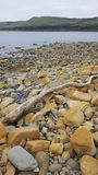 Dorset. Shoreline at Kimmeridge bay Stock Photography