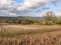 Dorset stubble field and landscape. English autumn scene looking across a Dorset stubble field stock photo
