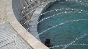 Dorstig Kraai Drinkwater van een fontein in het vierkante park van Sultanahmet, Istanboel stock videobeelden
