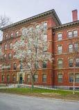 Dortoir de cour de Harvard à l'Université d'Harvard Photographie stock