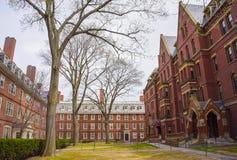 Dortoirs et entreprise informatique de Harvard dans la cour de Harvard Photos stock
