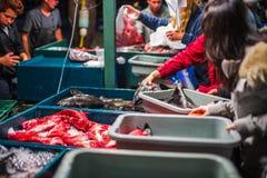 Dory van New Port Beach de Markt van Vlootvissen Stock Fotografie