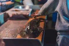 Dory van New Port Beach de Markt van Vlootvissen Royalty-vrije Stock Afbeelding