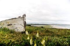 Dory van Newfoundland Stock Afbeeldingen