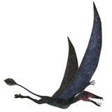 Dorygnathus Pterosaur over White. Dorygnathus was a carnivorous Pterosaur that lived in the Jurassic Era of Europe Stock Photography