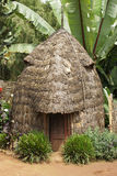 Dorze, Ethiopia, Africa. Traditional houses of Dorze people, Ethiopia, Africa Stock Photos