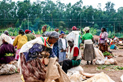 Dorze Market. People selling on a market in Ethiopia Stock Image