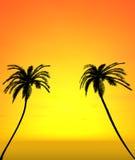 Dos árboles de coco con la opinión de la puesta del sol Foto de archivo