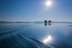 Dos árboles en un lago Foto de archivo libre de regalías