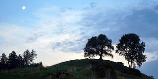 Dos árboles y lunas en el cielo Foto de archivo