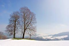 Dos árboles y una cruz Fotos de archivo