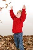 Dos años adorables que juegan en hojas Imagen de archivo