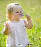 Dos-años de niño en el prado Imagenes de archivo