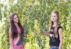 Dos adolescentes cerca de un abedul Fotos de archivo