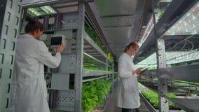 Dos agrónomos en las capas blancas en una instalación de producción vegetal moderna almacen de metraje de vídeo
