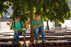 Dos alumnos se sientan debajo de un árbol y leen los libros en un día de verano soleado imagenes de archivo