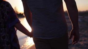 Dos amantes que se unen a las manos La silueta del detalle de la tenencia del hombre y de la mujer entrega el fondo del lago suns almacen de metraje de vídeo