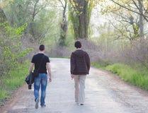 Dos amigos adultos masculinos que caminan en naturaleza en día de primavera soleado Fotografía de archivo libre de regalías