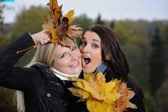 Dos amigos de muchacha hermosos con las hojas del otoño Foto de archivo libre de regalías